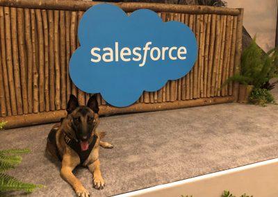 #salesforce